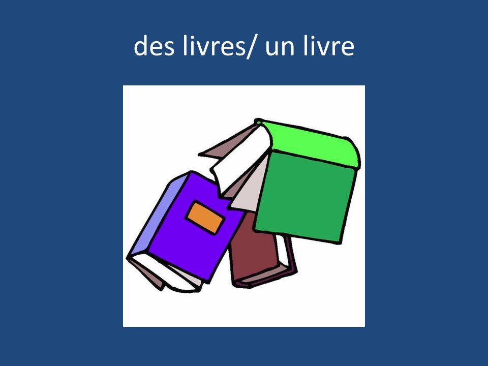 des livres/ un livre