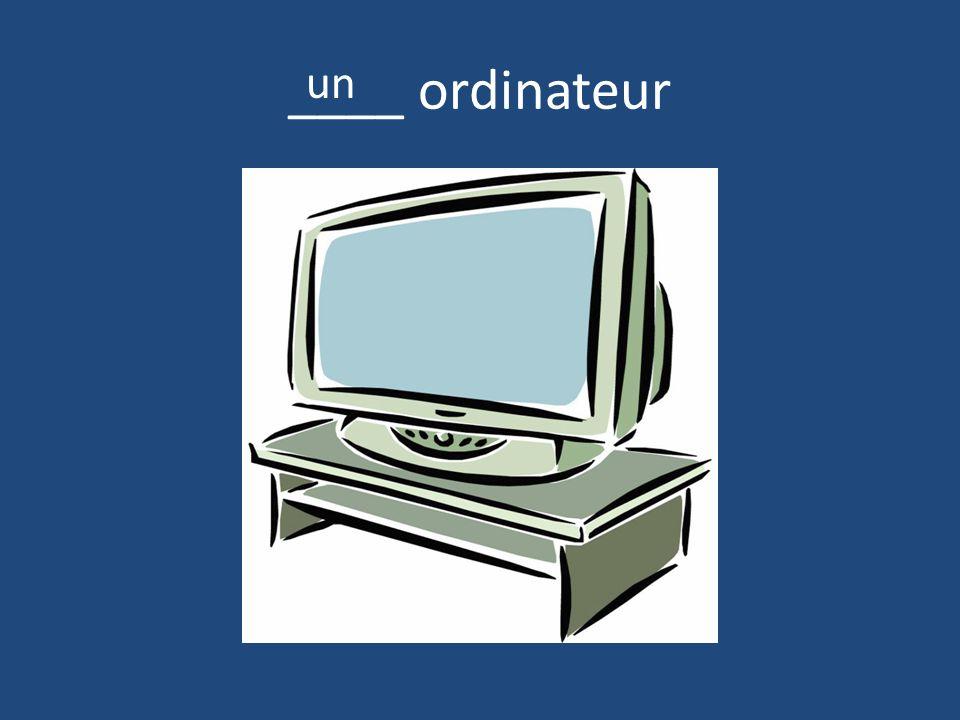 ____ ordinateur un