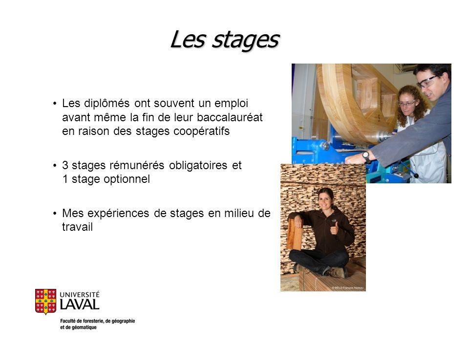 Les stages Les diplômés ont souvent un emploi avant même la fin de leur baccalauréat en raison des stages coopératifs.