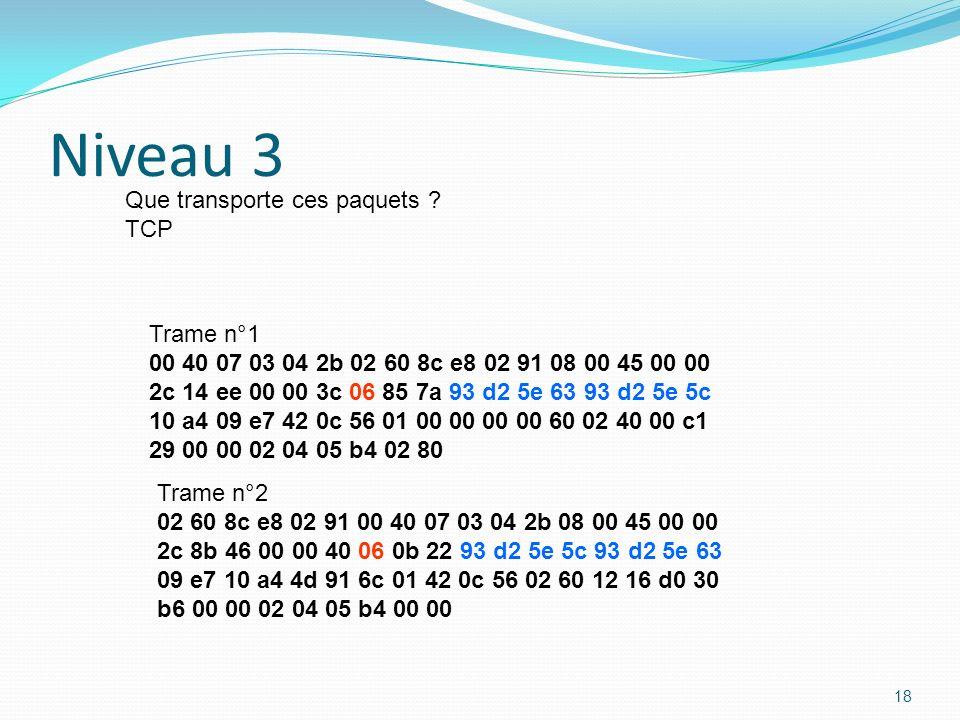 Niveau 3 Que transporte ces paquets TCP Trame n°1