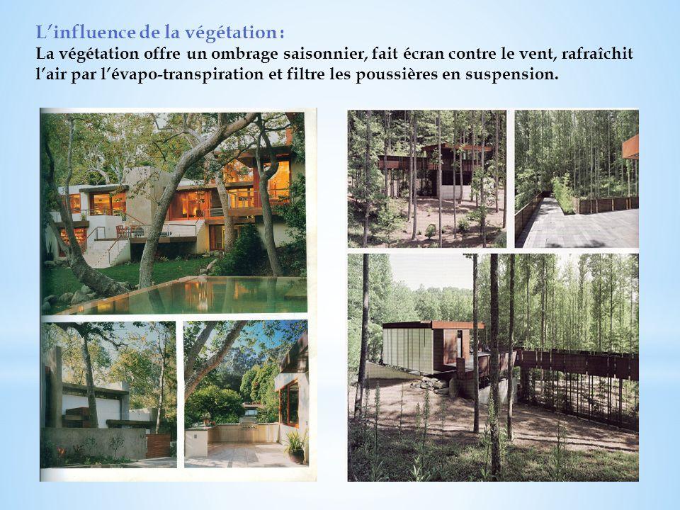 L'influence de la végétation :