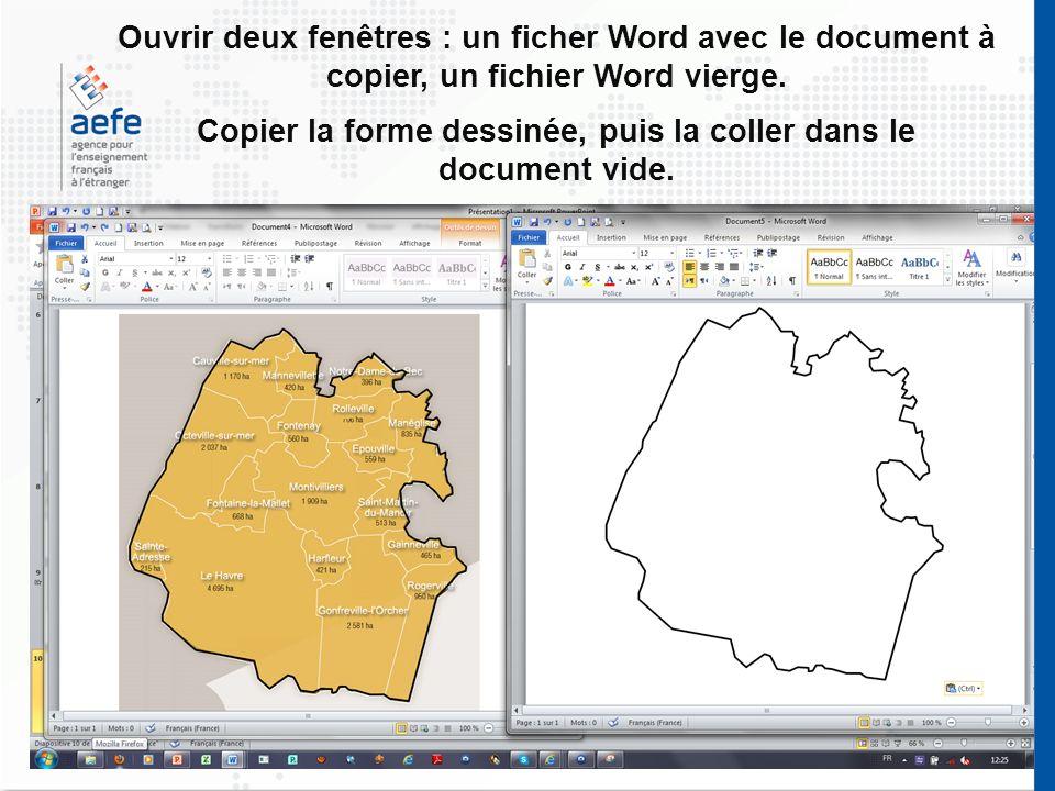 Copier la forme dessinée, puis la coller dans le document vide.