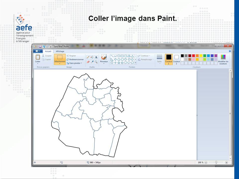 Coller l'image dans Paint.