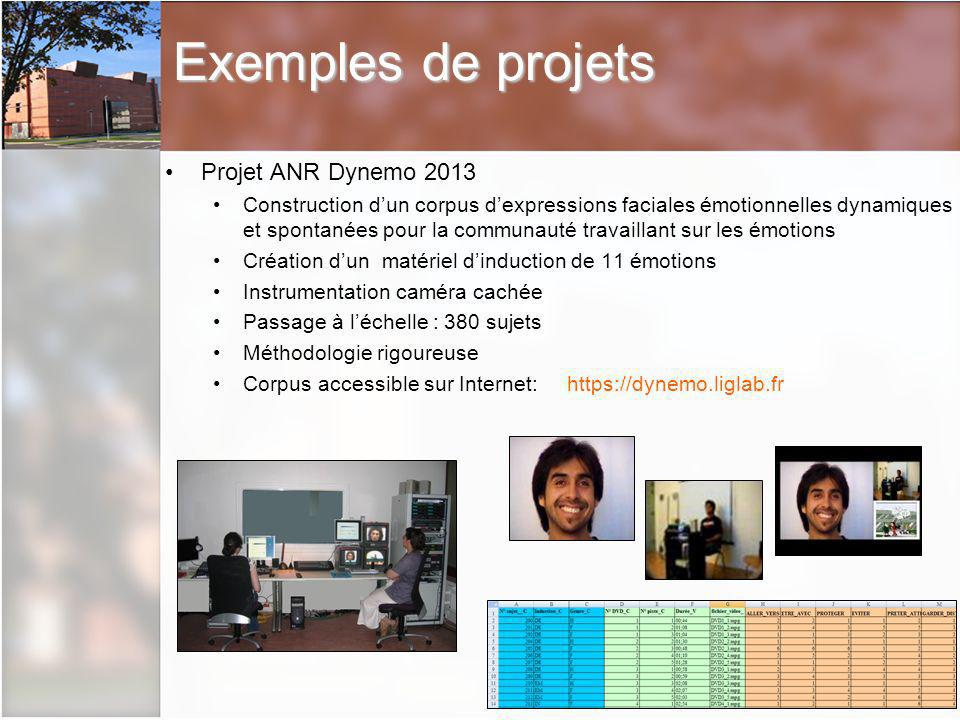 Exemples de projets Projet ANR Dynemo 2013