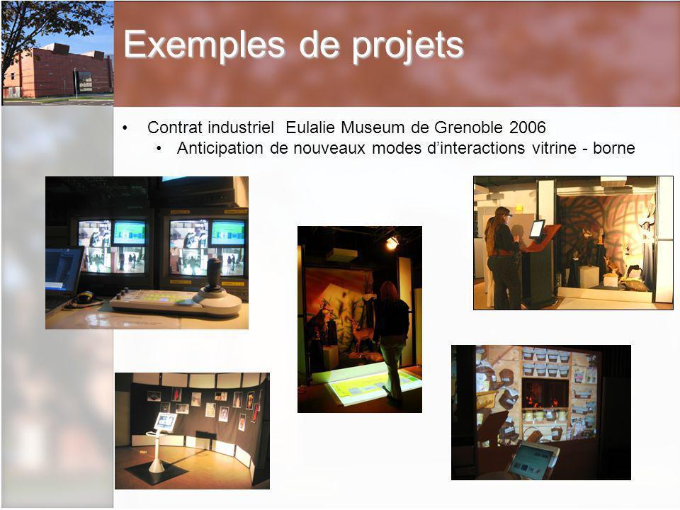 Exemples de projets Contrat industriel Eulalie Museum de Grenoble 2006