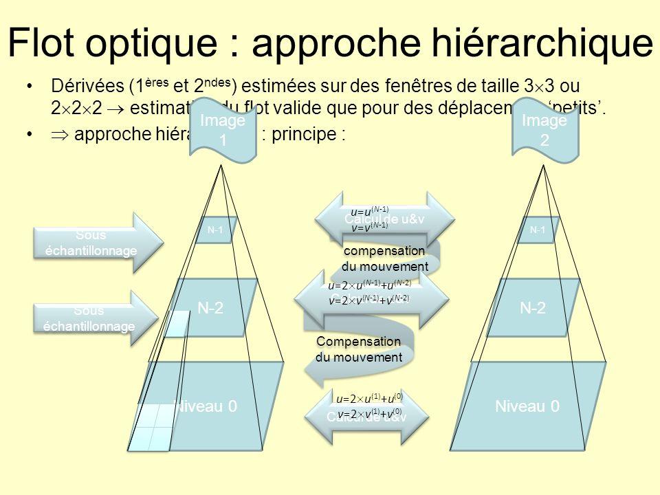 Flot optique : approche hiérarchique
