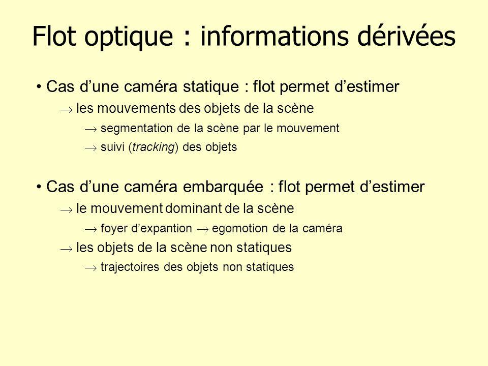 Flot optique : informations dérivées