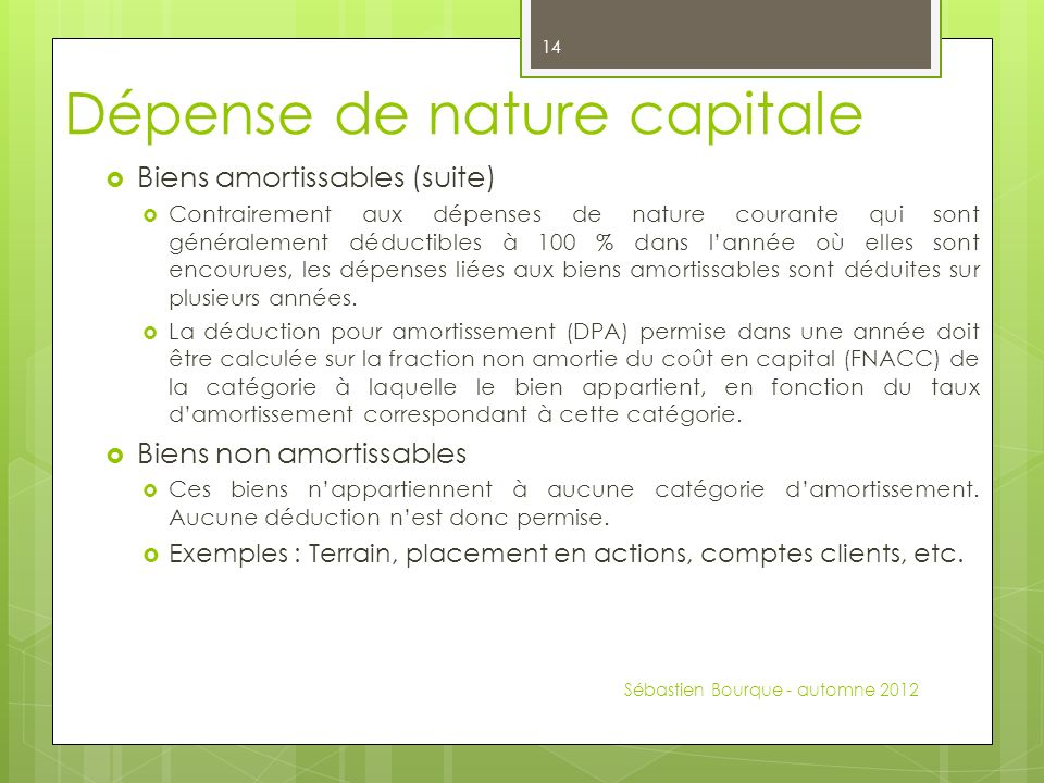 Dépense de nature capitale