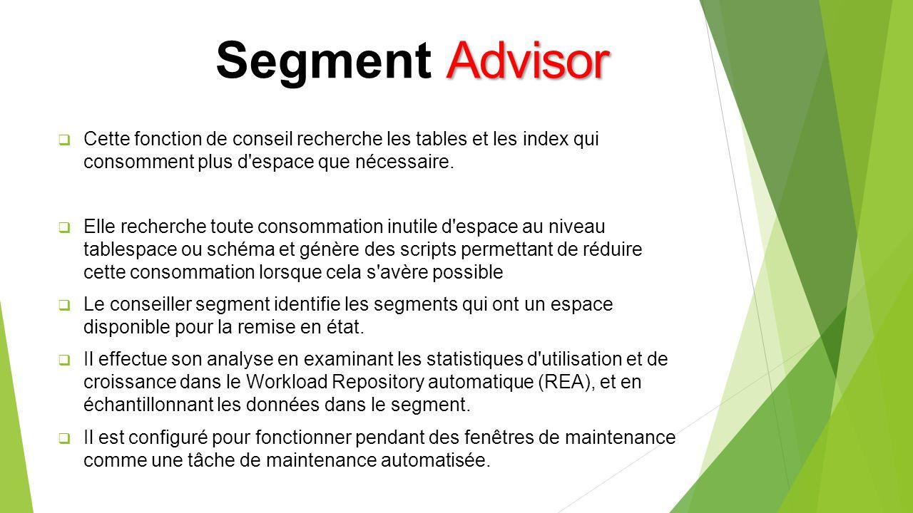 Segment Advisor Cette fonction de conseil recherche les tables et les index qui consomment plus d espace que nécessaire.