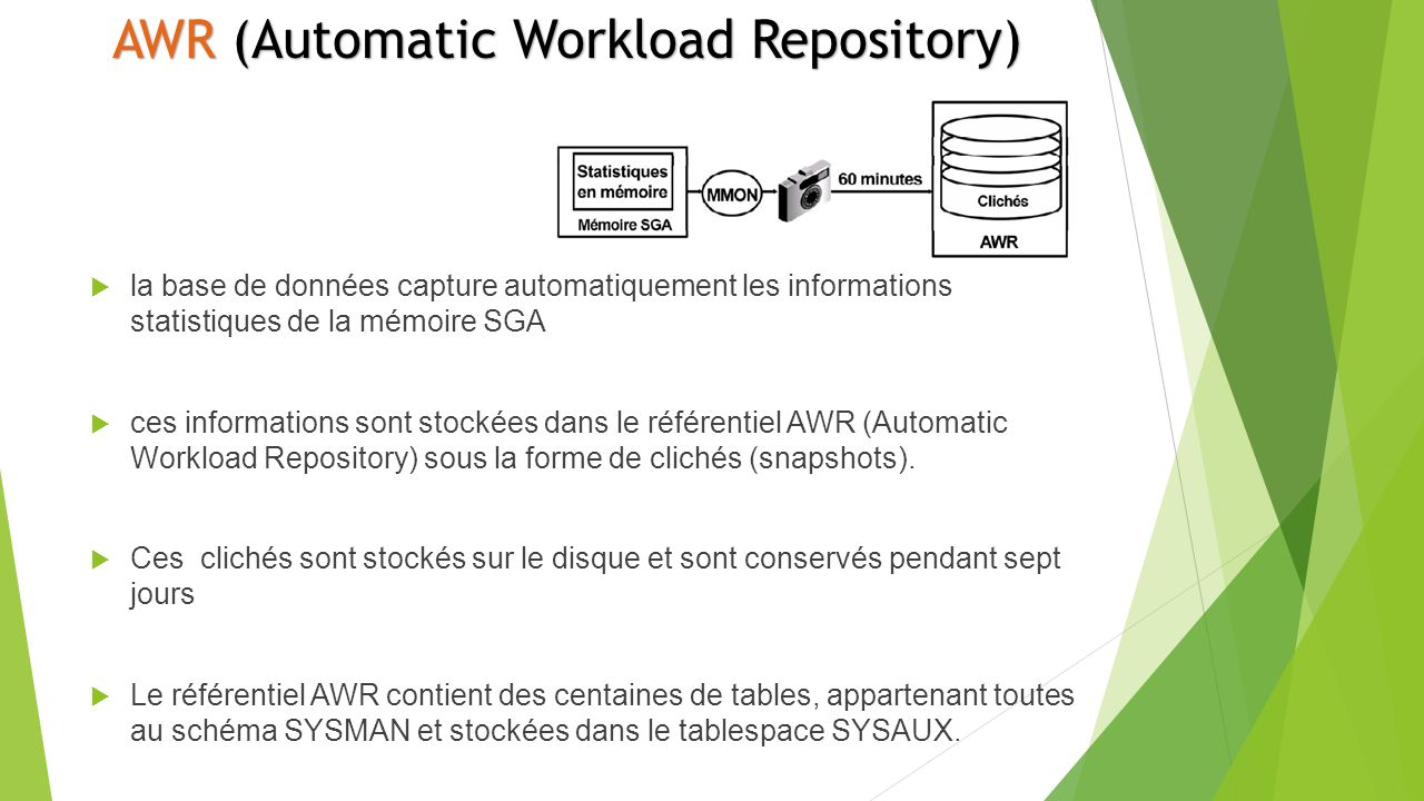 AWR (Automatic Workload Repository)