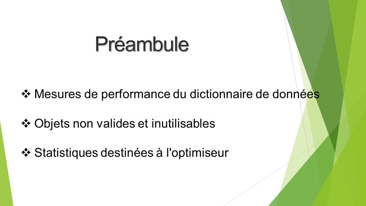 Préambule Mesures de performance du dictionnaire de données
