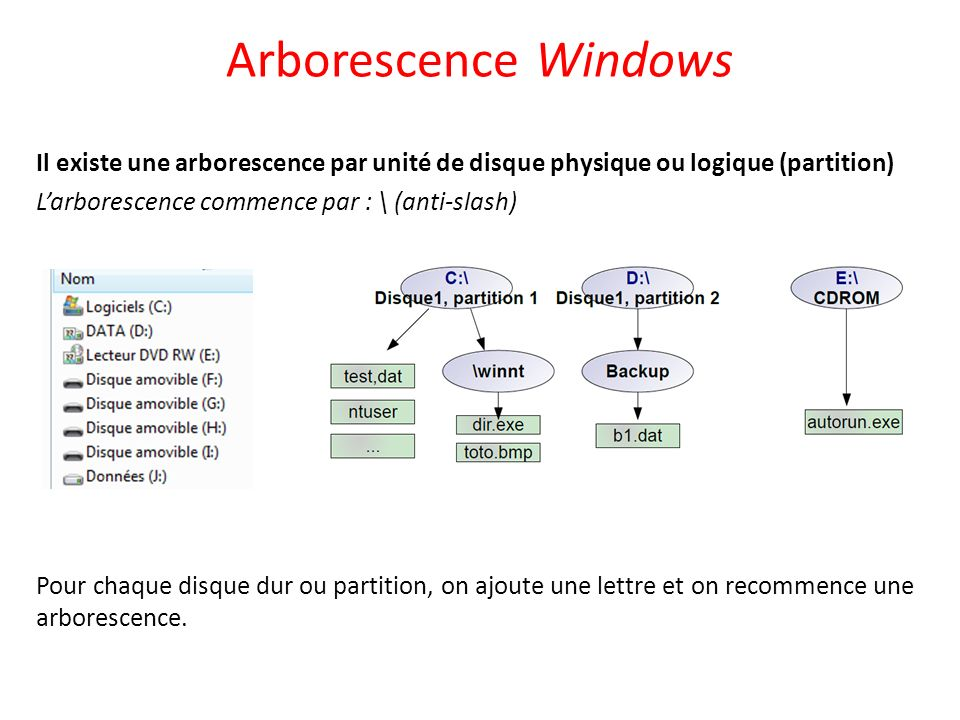 Arborescence Windows