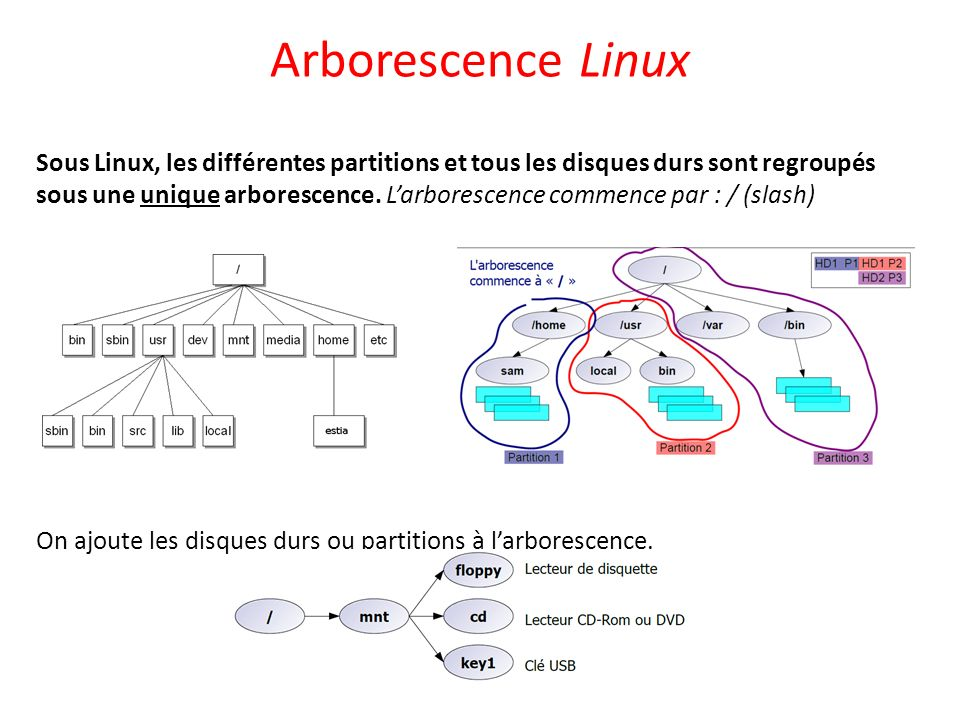Arborescence Linux