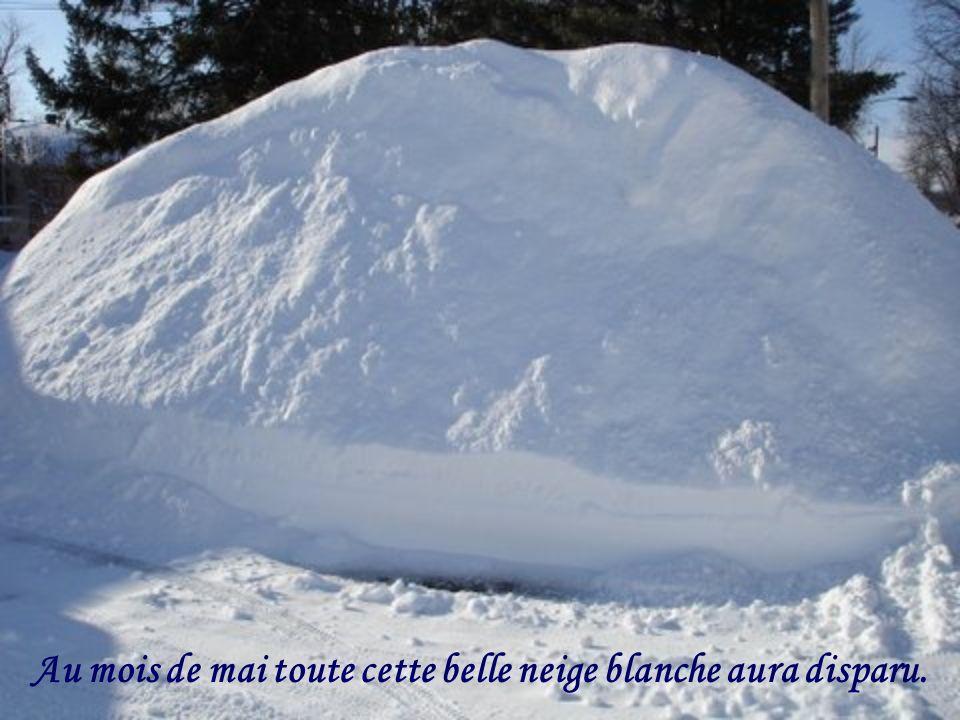 Au mois de mai toute cette belle neige blanche aura disparu.
