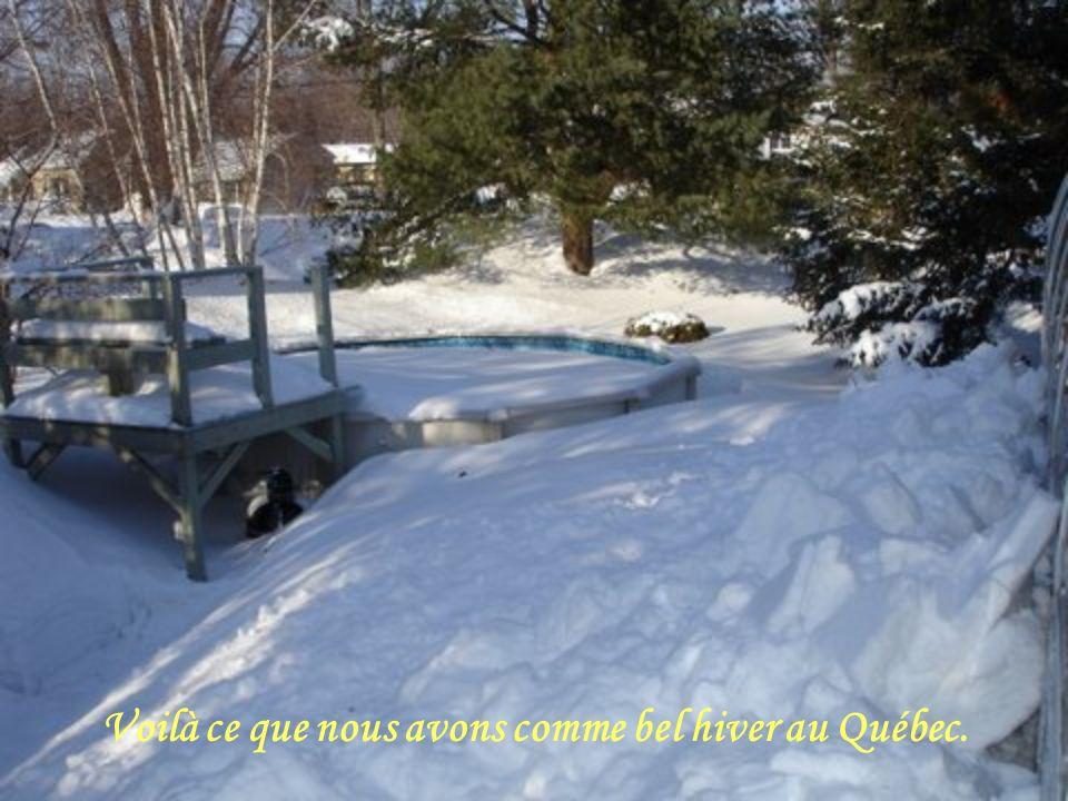 Voilà ce que nous avons comme bel hiver au Québec.