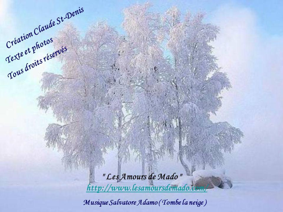 Musique Salvatore Adamo ( Tombe la neige )