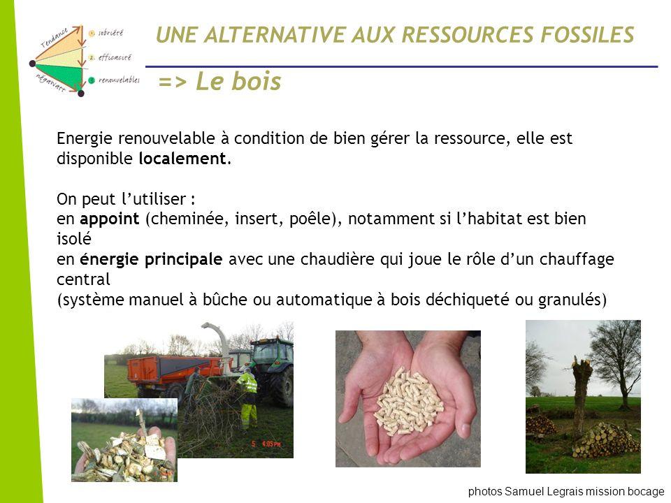 => Le bois UNE ALTERNATIVE AUX RESSOURCES FOSSILES