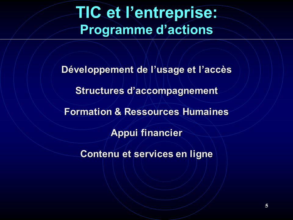 TIC et l'entreprise: Programme d'actions