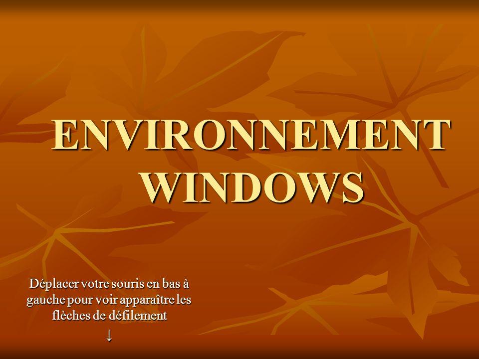 ENVIRONNEMENT WINDOWS