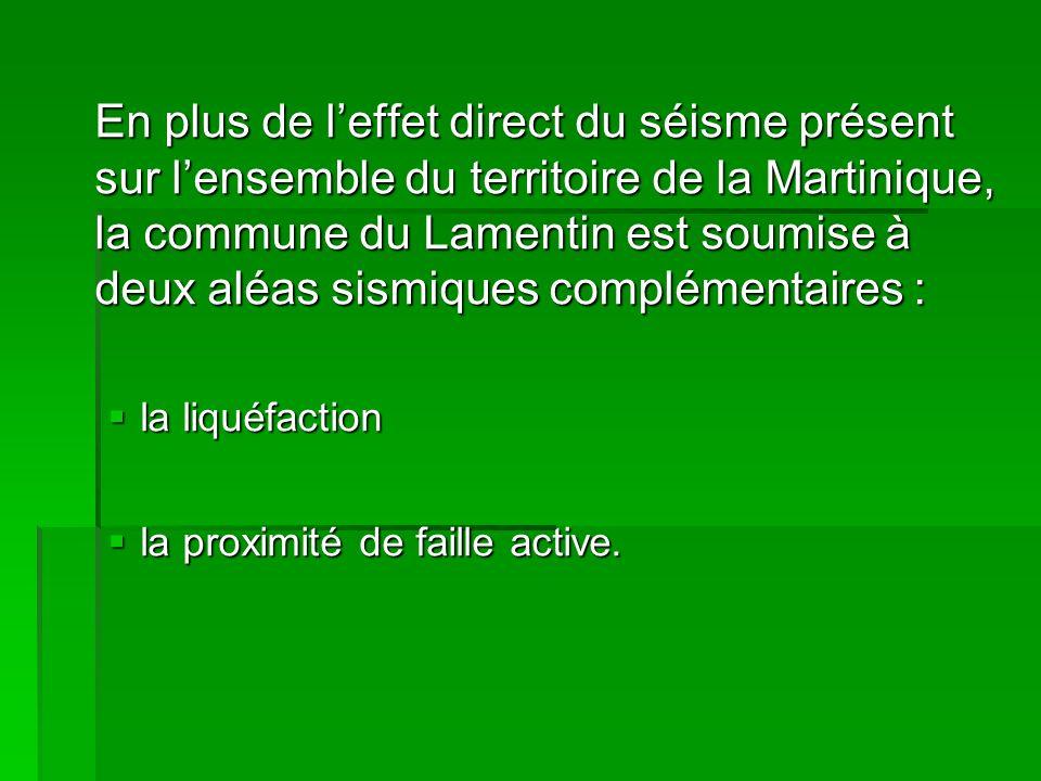 En plus de l'effet direct du séisme présent sur l'ensemble du territoire de la Martinique, la commune du Lamentin est soumise à deux aléas sismiques complémentaires :
