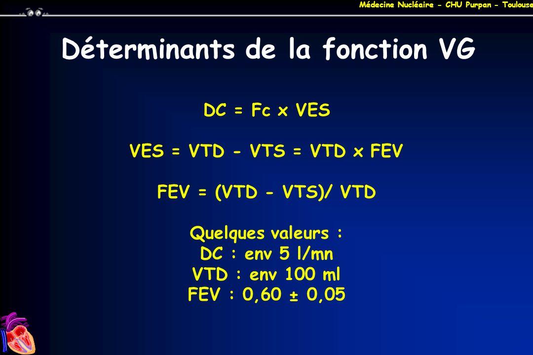 Déterminants de la fonction VG