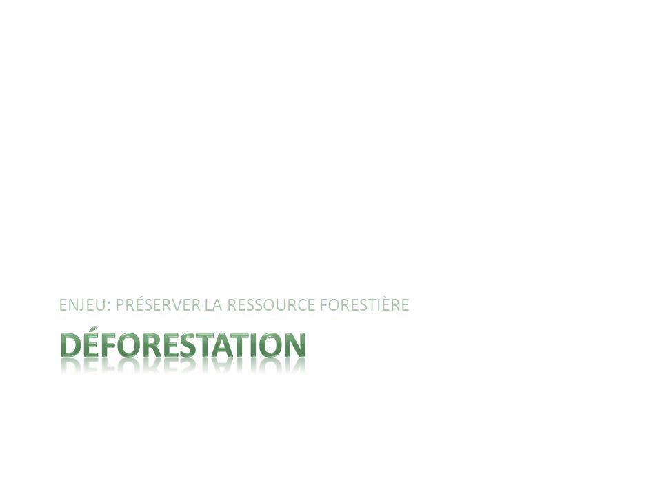 ENJEU: PRÉSERVER LA RESSOURCE FORESTIÈRE