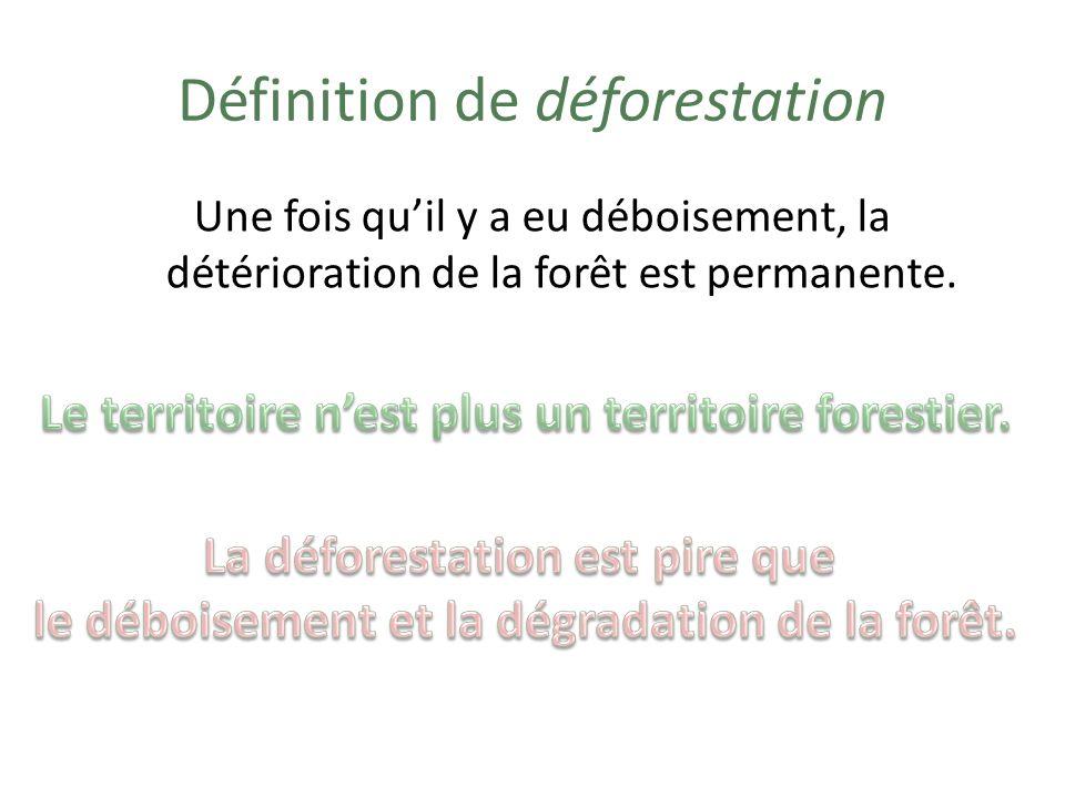 Définition de déforestation