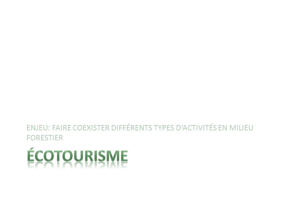 ENJEU: FAIRE COEXISTER DIFFÉRENTS TYPES D'ACTIVITÉS EN MILIEU FORESTIER