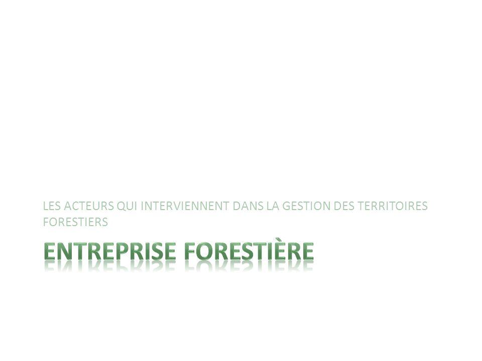 Entreprise forestière