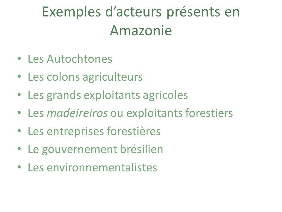 Exemples d'acteurs présents en Amazonie