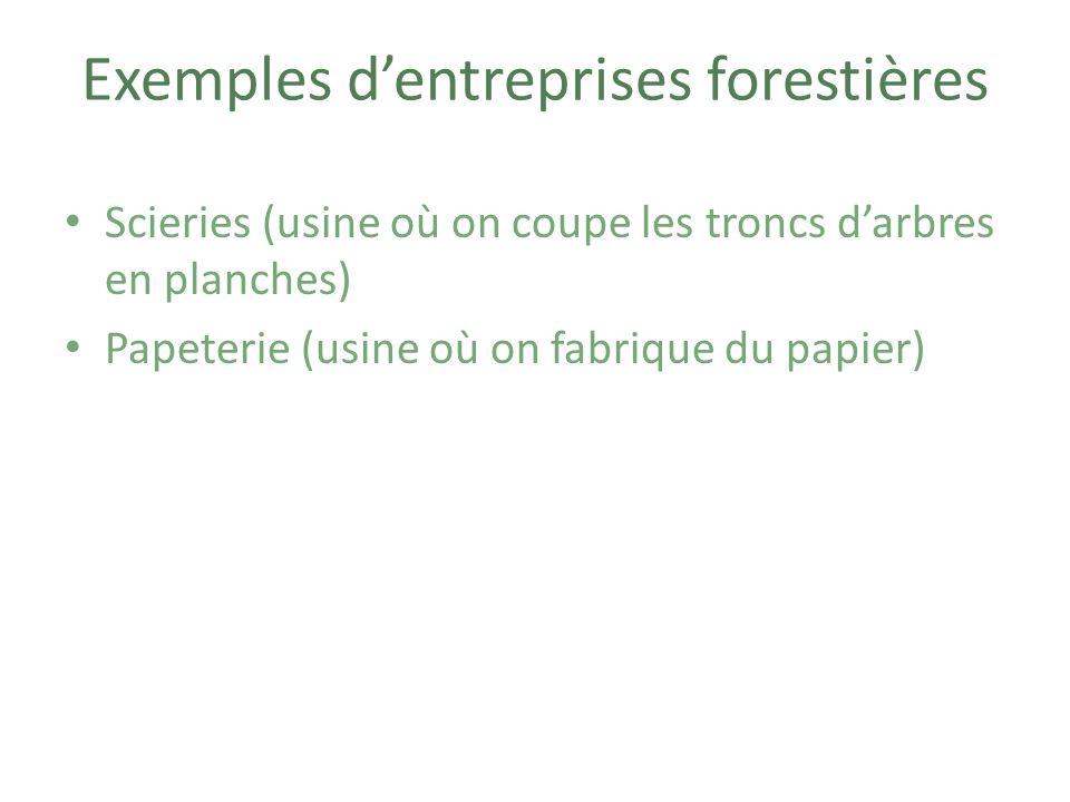 Exemples d'entreprises forestières