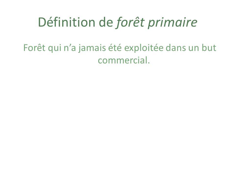 Définition de forêt primaire
