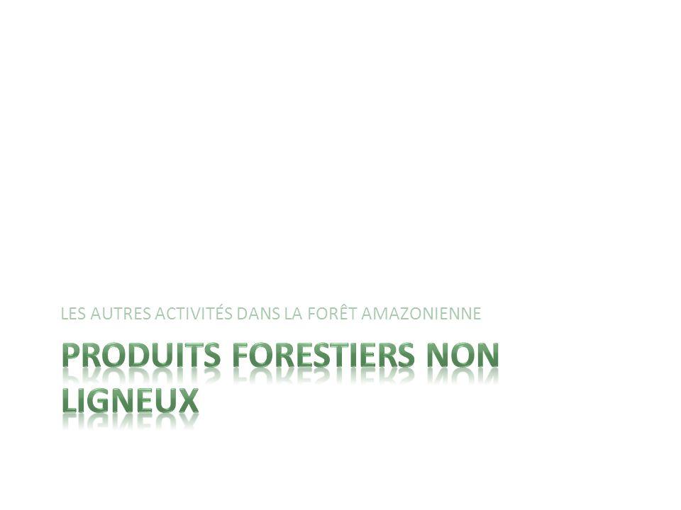 Produits forestiers non ligneux