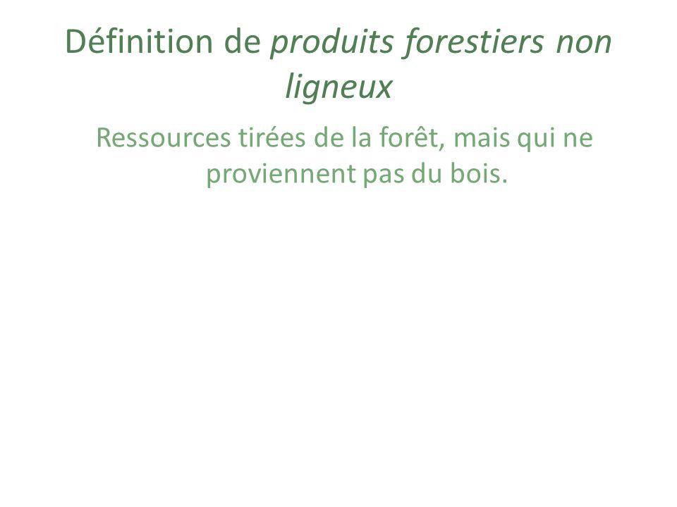 Définition de produits forestiers non ligneux