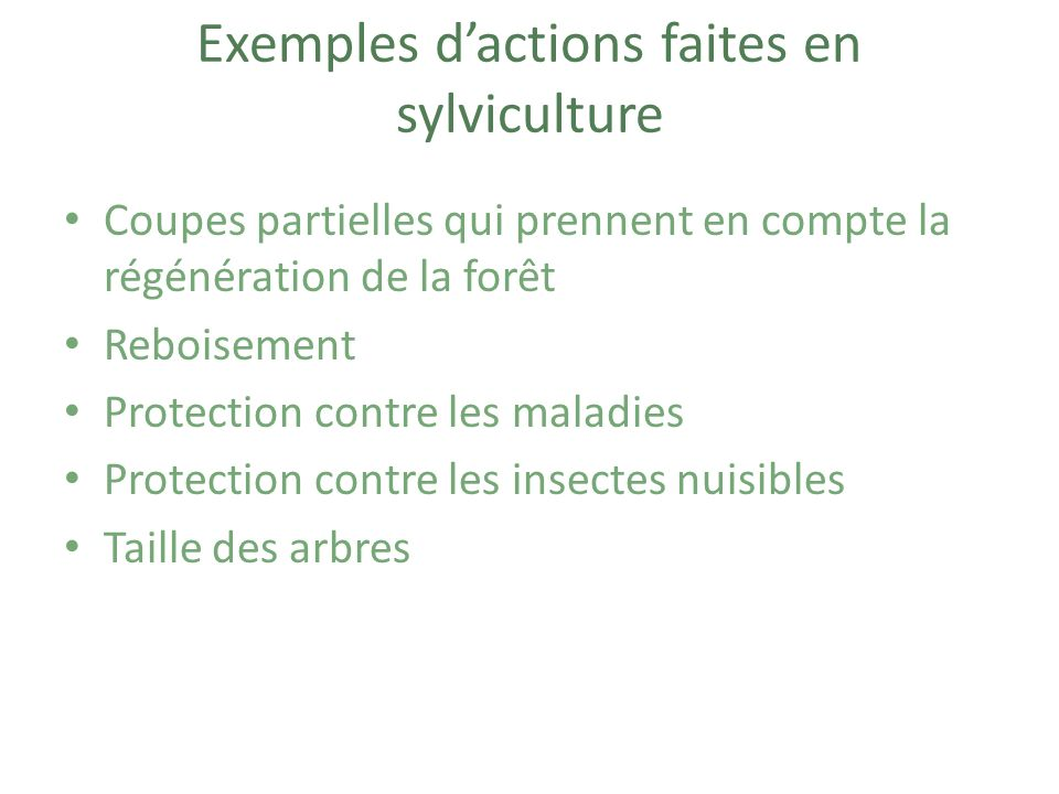 Exemples d'actions faites en sylviculture