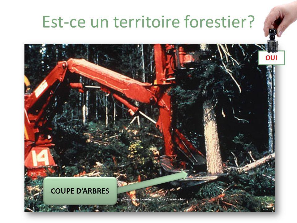Est-ce un territoire forestier