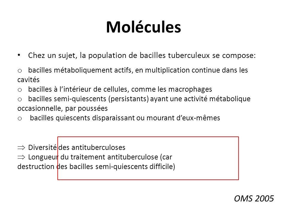Molécules Chez un sujet, la population de bacilles tuberculeux se compose: bacilles métaboliquement actifs, en multiplication continue dans les.