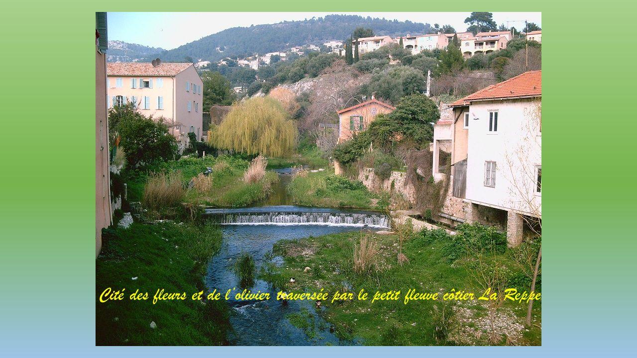 Cité des fleurs et de l'olivier traversée par le petit fleuve côtier La Reppe