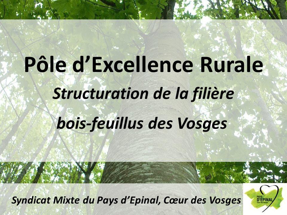 Pôle d'Excellence Rurale