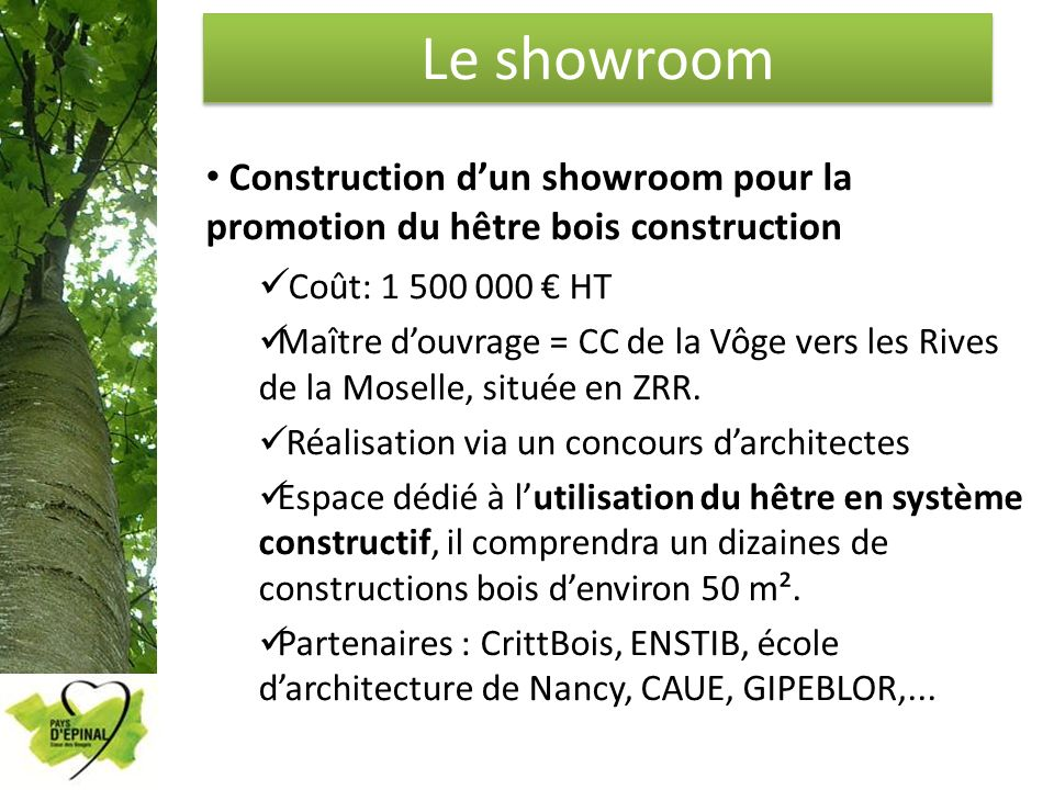 Le showroom Construction d'un showroom pour la promotion du hêtre bois construction. Coût: 1 500 000 € HT.