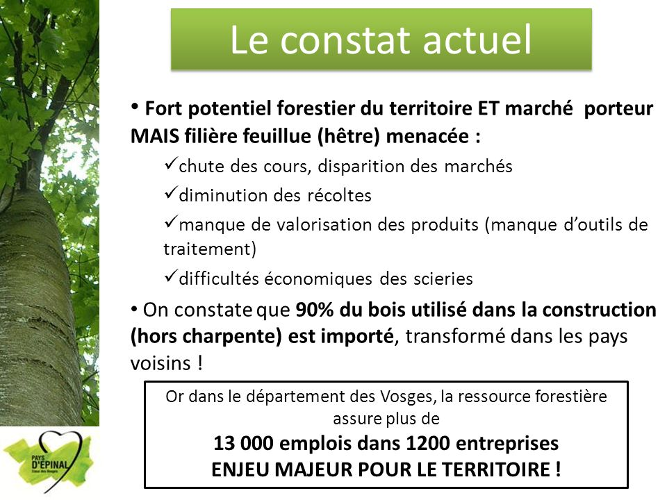 13 000 emplois dans 1200 entreprises ENJEU MAJEUR POUR LE TERRITOIRE !