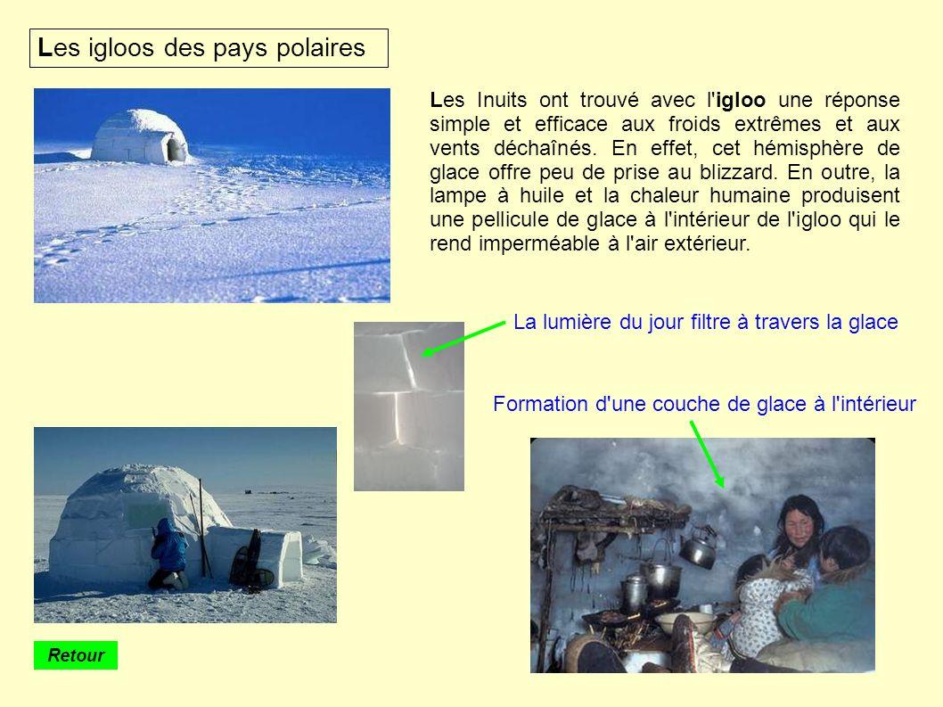 Les igloos des pays polaires