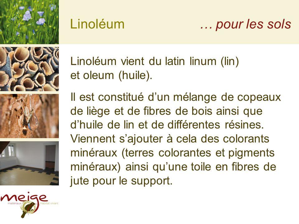 Linoléum … pour les sols