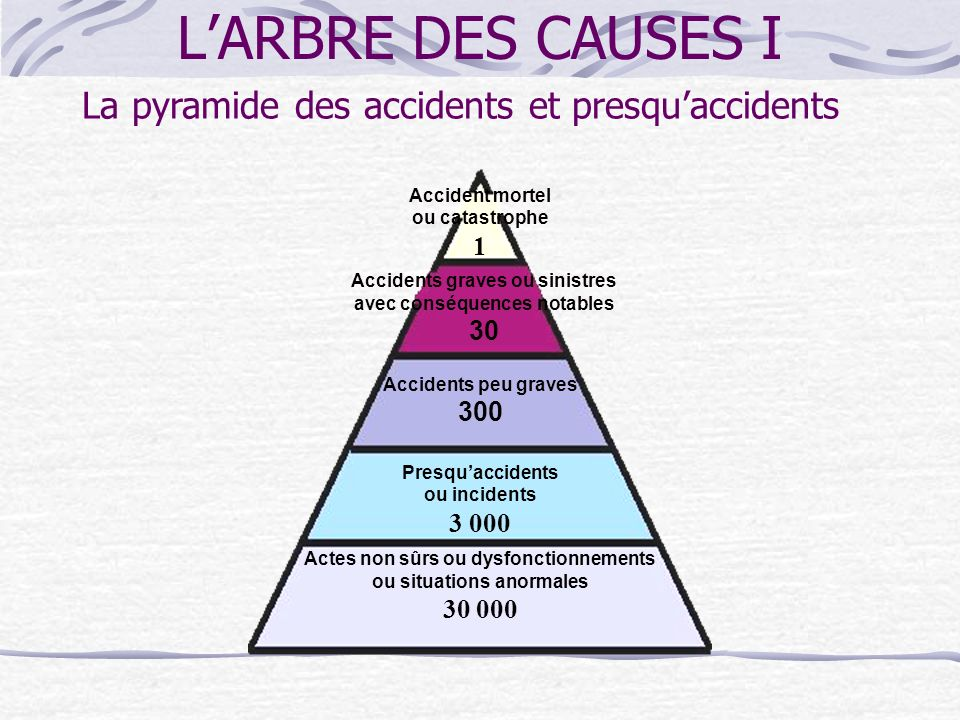 L'ARBRE DES CAUSES I La pyramide des accidents et presqu'accidents