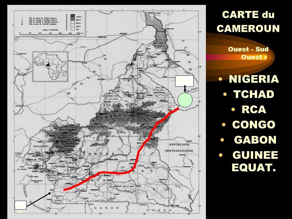 NIGERIA TCHAD RCA CONGO GABON GUINEE EQUAT. CARTE du CAMEROUN