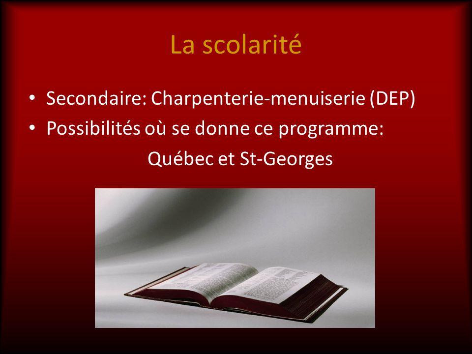 La scolarité Secondaire: Charpenterie-menuiserie (DEP)