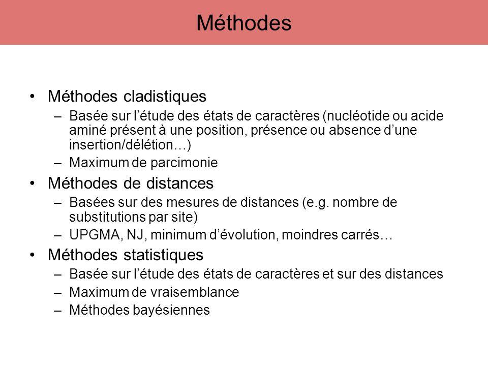 Méthodes Méthodes cladistiques Méthodes de distances
