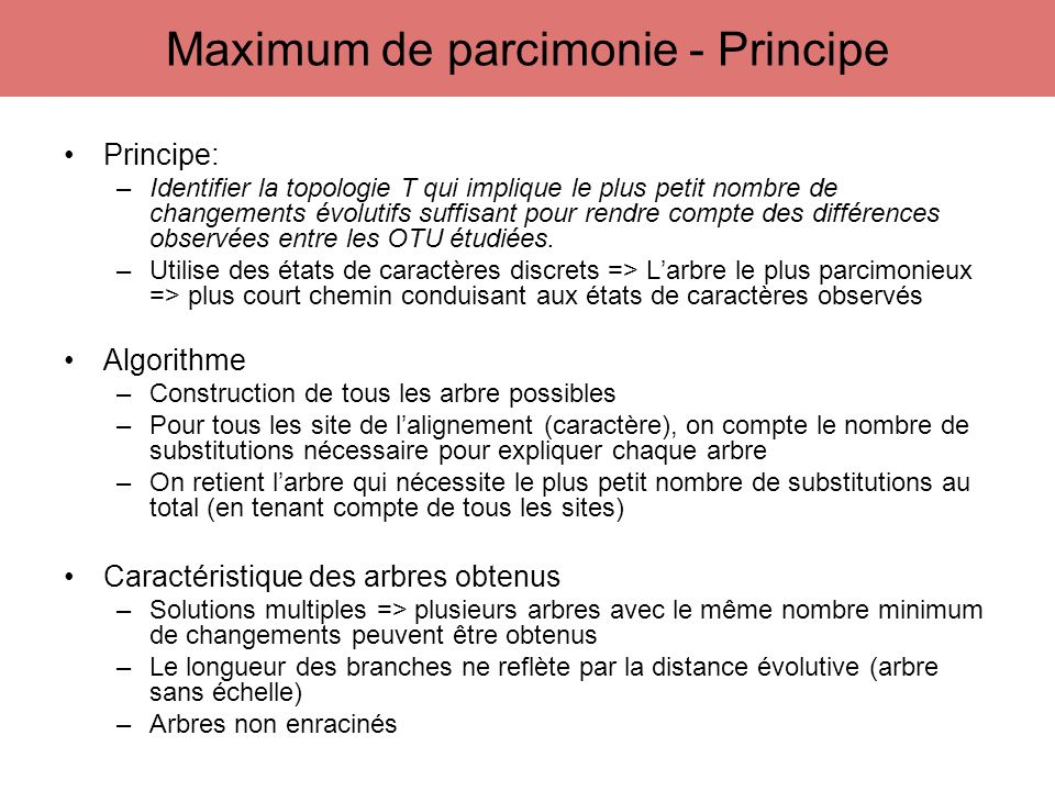 Maximum de parcimonie - Principe