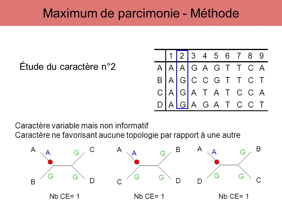 Maximum de parcimonie - Méthode