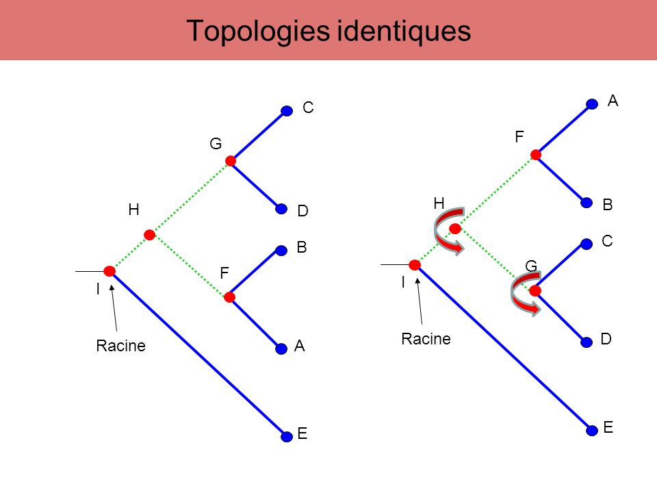 Topologies identiques